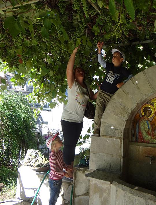MonasteryRezevici-4